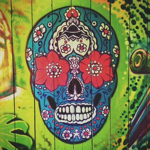 skull-450746_640