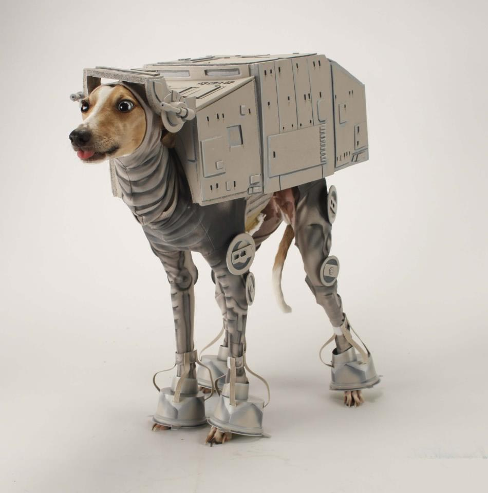 star_wars-dog_costume