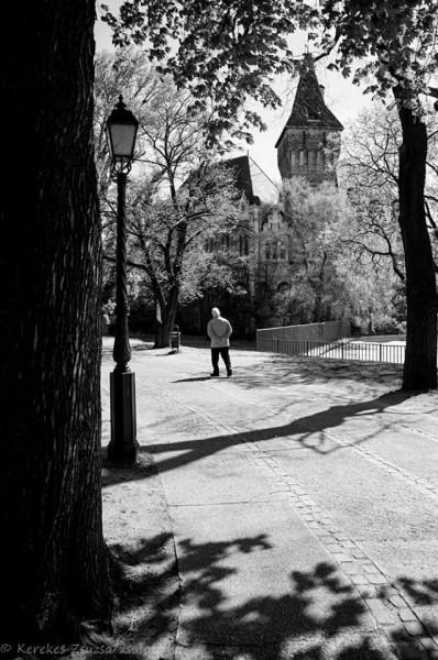 Fotó: Kerekes Zsuzsa Kerekes Zsuzsa fotói