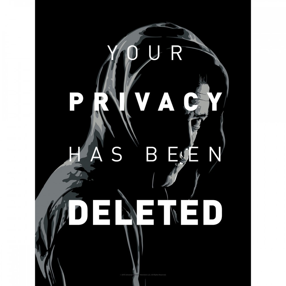 mr-robot-your-privacy-has-been-deleted-giclee-print-18-x-24-653_1000